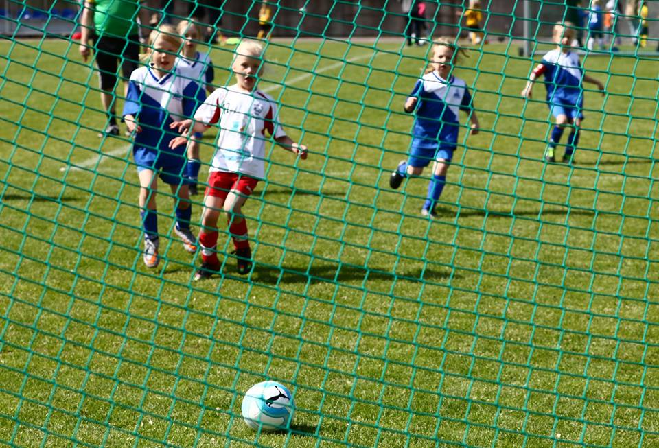 stadi_cup_maaliverkko